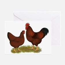 New Hampshire Chickens Greeting Card