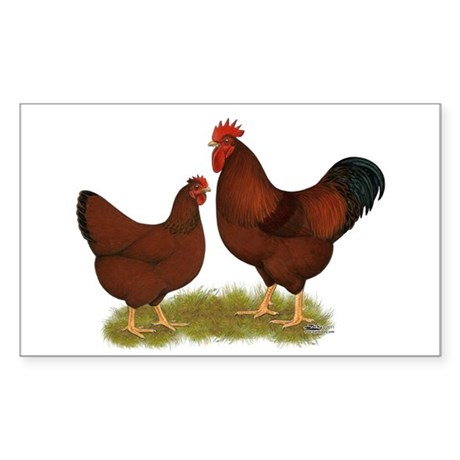 New Hampshire Chickens Sticker (Rectangle)