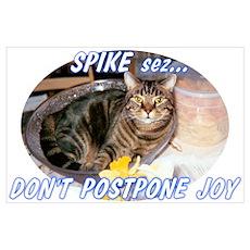 Don't Postpone Joy Poster