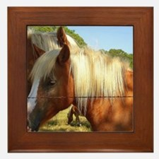 """Haflinger Secret"" Framed Tile"