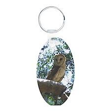 Barn Owl Keychains
