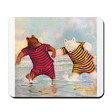 Roosevelt Bears on the Beach Mousepad