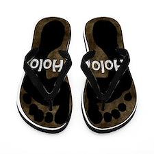 Holo Holo