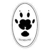 Animal 10 Pack