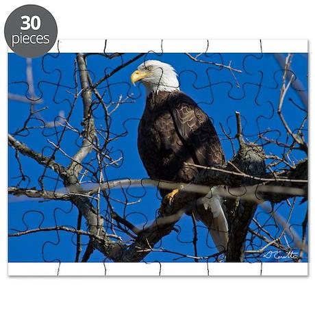 Majestic Eagle Puzzle