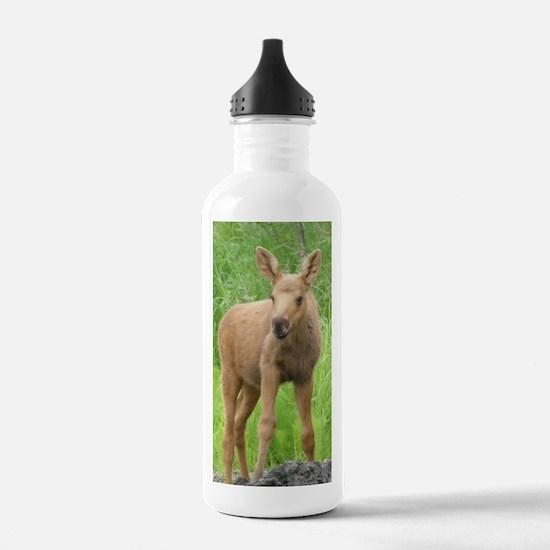 Moose Calf #01 Water Bottle
