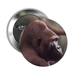 Silverback Gorilla Button