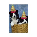 Border Collie Birthday Rectangle Magnet