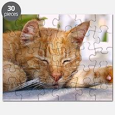 Sleeping Cat Puzzle