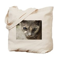 Gray Cat Tote Bag
