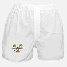 Unique Plane Boxer Shorts