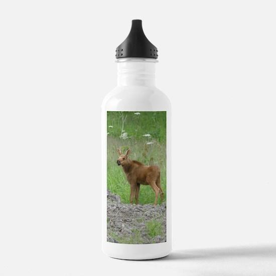 Twin Calves #01 Water Bottle