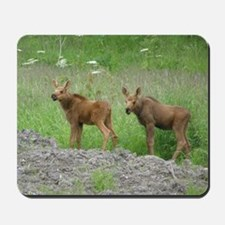 Twin Calves #01 Mousepad