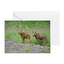 Twin Calves #01 Greeting Card