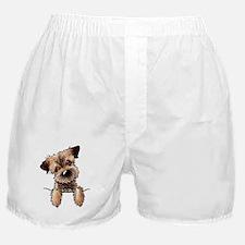 Pocket Border Terrier Boxer Shorts