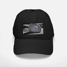 Cute Sand dollar Baseball Hat
