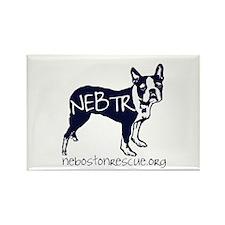 Cute Nebtr Rectangle Magnet (10 pack)