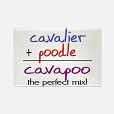 Cavapoo PERFECT MIX Rectangle Magnet