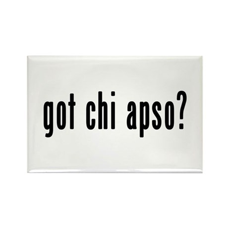 GOT CHI APSO Rectangle Magnet (10 pack)