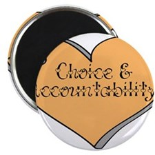 Choice and Accountability - Y Magnet