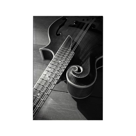 Mandolin Too Rectangle Magnet