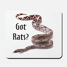 Snake Boa Got Rats Mousepad
