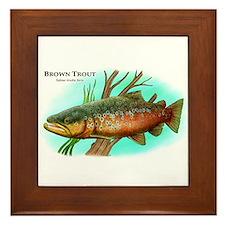 Brown Trout Framed Tile