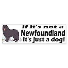 If it's not a Newfoundland ... Bumper Bumper Sticker