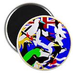 Chagos Birds Magnet