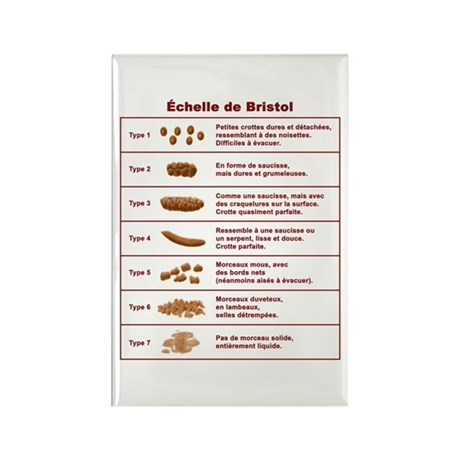 Échelle de Bristol Rectangle Magnet