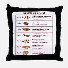 Échelle de Bristol Throw Pillow
