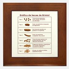 Gráfico de heces de Bristol Framed Tile