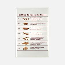 Gráfico de heces de Bristol Rectangle Magnet