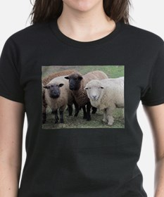 3 faces of sheep Tee