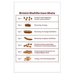Bristol-Stuhlformen-Skala Posters