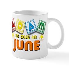 Adam is Due in June Mug
