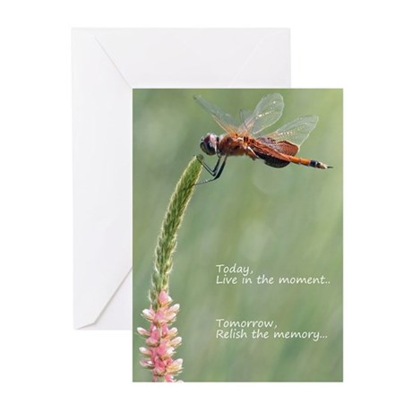 Live in the Moment Greeting Cards (Pk of 10)