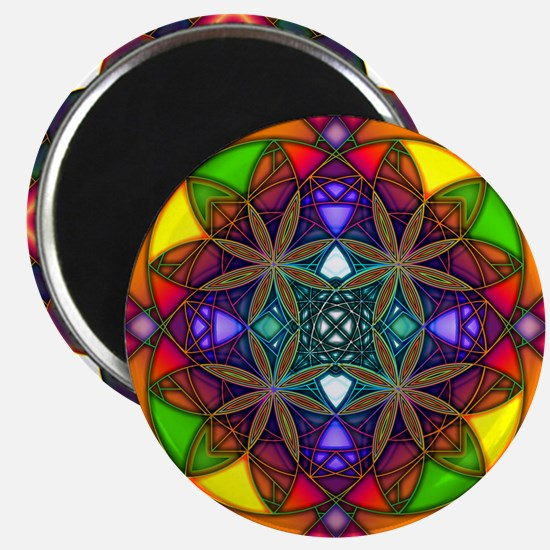 Funny Rainbow colors Magnet