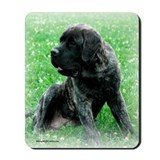 English mastiff Mouse Pads