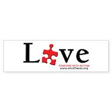 Love Someone with Autism Sticker (Bumper)
