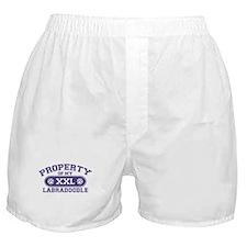 Labradoodle PROPERTY Boxer Shorts