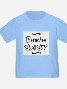 Cavachon BABY T
