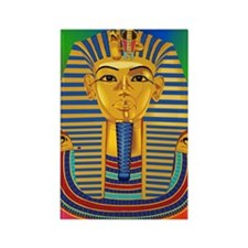 Tut Mask on Green Blue Purple Rectangle Magnet
