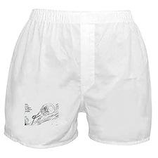 Sisyphus Ink Boxer Shorts