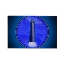 Cool Pensacola lighthouse Rectangle Magnet