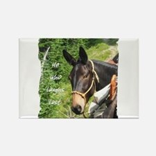 Smiling Mule Rectangle Magnet
