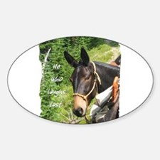 Smiling Mule Decal