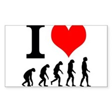 I Heart Evolution Decal