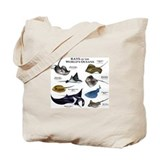Aquatic animals stingrays rays of the world Canvas Totes