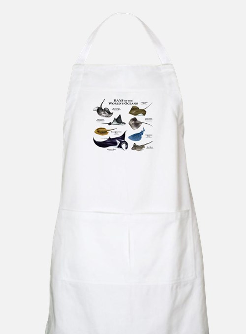 Rays of the World Apron